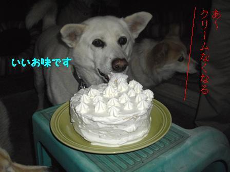 boo-cake.JPG